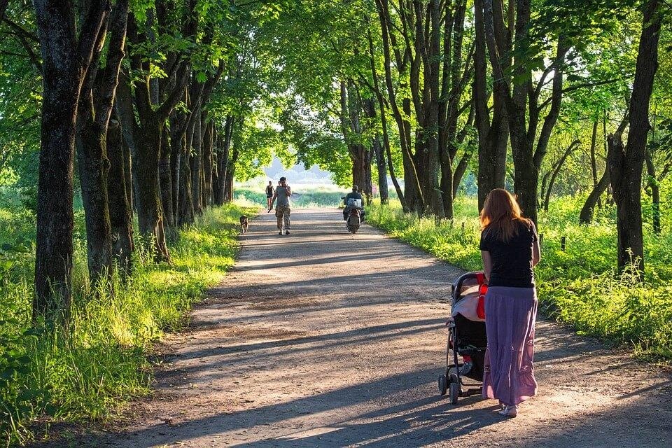 並木道をベビーカーを押しながら散歩するママさん
