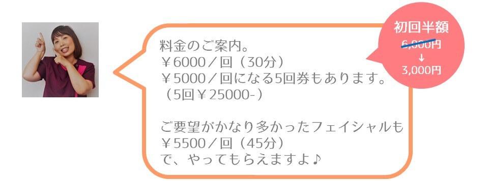 料金のご案内。 1回30分6000円。1回5000円になる4回券もあります。ご要望がかなり多かったフェイシャルも¥5500/回(45分)でやってもらえますよ。